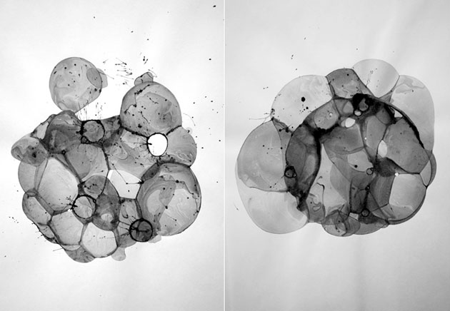Bubble Drawings by Charlotte X. C. Sullivan & Ethan Knechel (1)