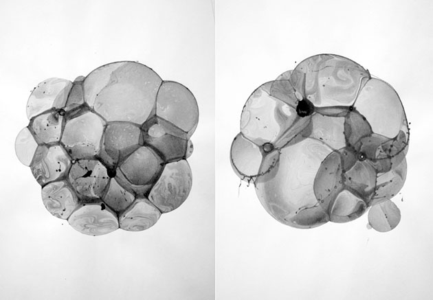 Bubble Drawings by Charlotte X. C. Sullivan & Ethan Knechel (2)