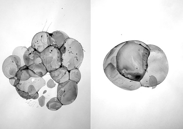 Bubble Drawings by Charlotte X. C. Sullivan & Ethan Knechel (4)